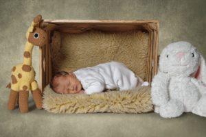 Portrait, Kinder, Familien, Fotoshooting, Fotostudio, Fotoatelier, Sachsen, Oberlausitz, Zittau.
